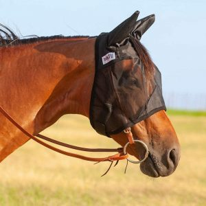 Can a horse wear a fly mask in the rain?